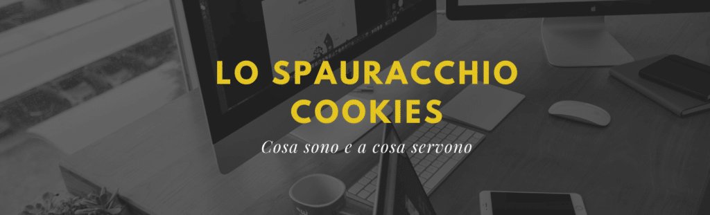 Cosa sono i cookies e a cosa servono